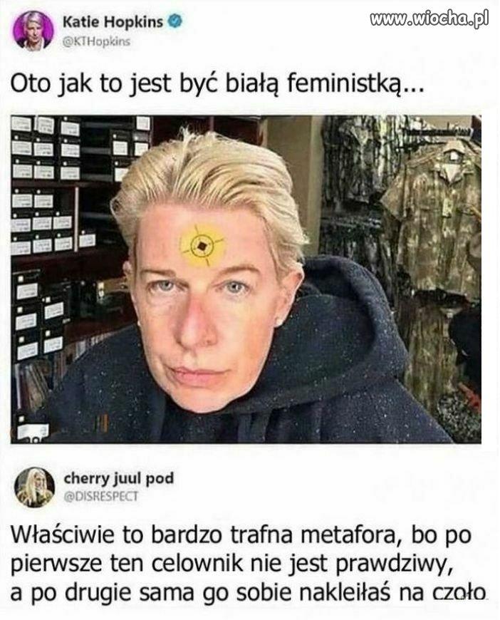 Prawda o feministkach