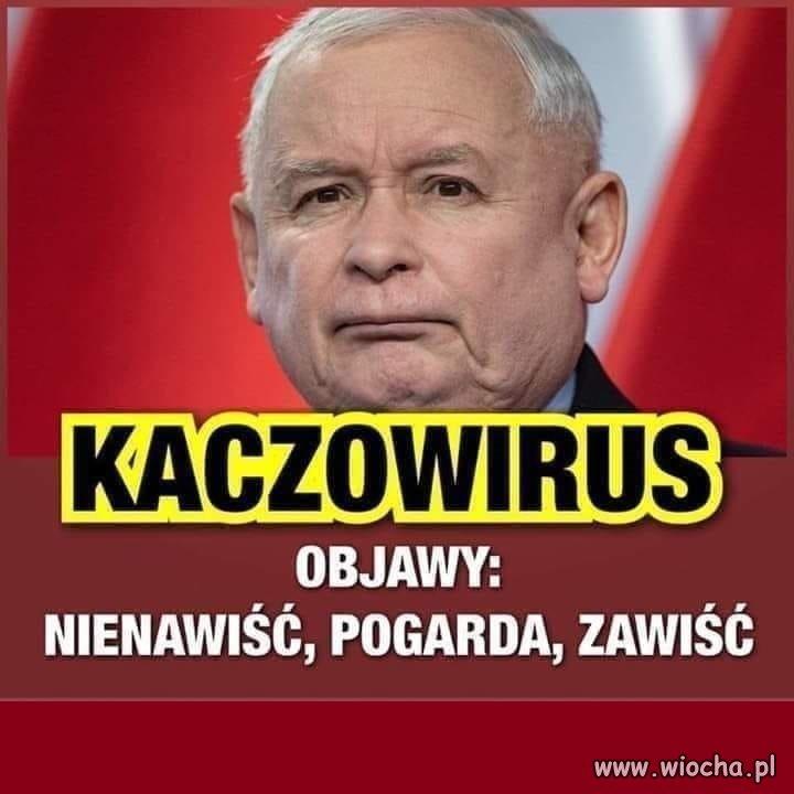 https://img.wiocha.pl/images/7/0/70e38a26817d0261c79070000dbd69e8.jpg