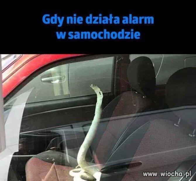 Środek zapobiegający włamaniu do samochodu