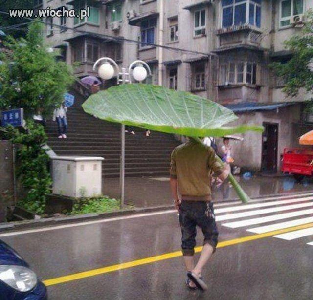 Kiedy pada deszcz, a ty nie masz parasola.