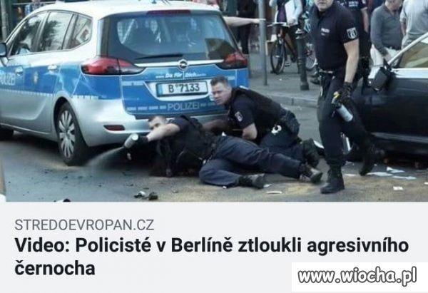 Czesi piszą krótko i na temat