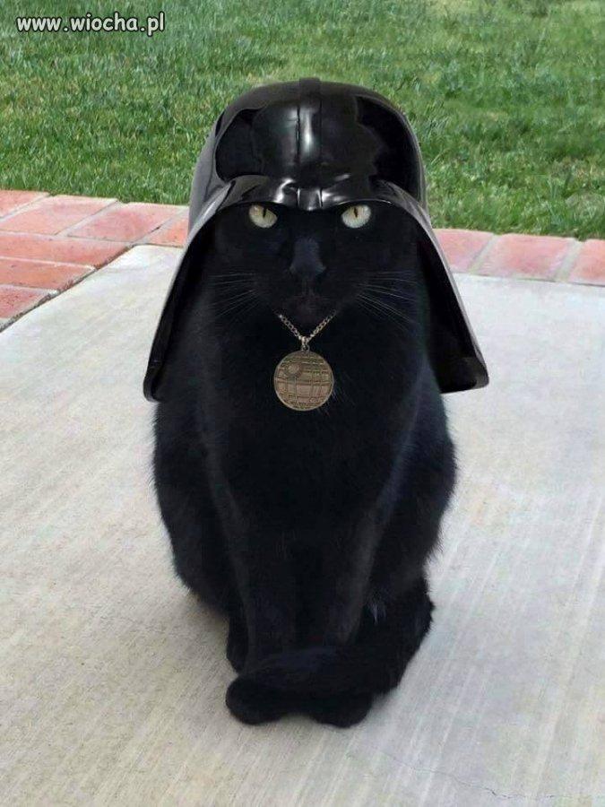 Cat-Vader
