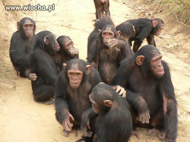 Walne zebranie w siedzibie partii rządzącej