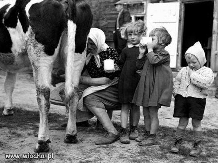 Zdrowie czeka w kubku mleka.