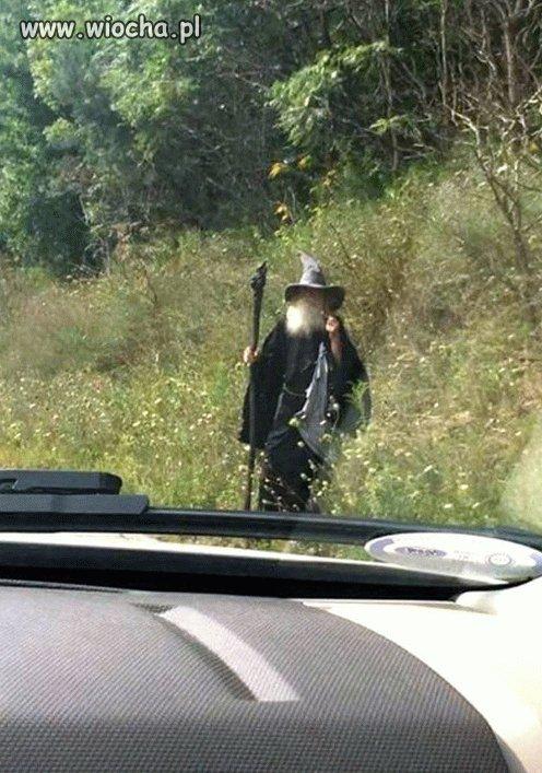 Jedziesz sobie, a tu Gandalf