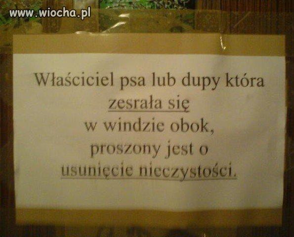 http://img.wiocha.pl/images/8/1/81a8822e69416510eac571fc2af80634.jpg