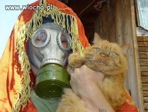 Z moim dziwnym kotem.