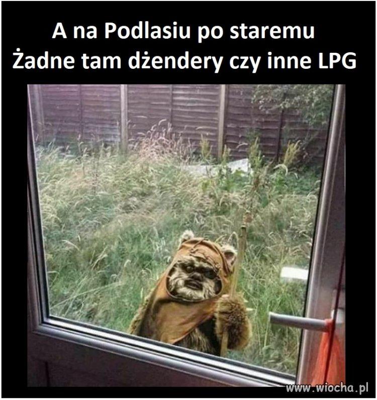 A tymczasem na Podlasiu...
