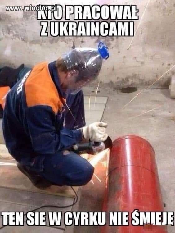 Wschodnia siła robocza