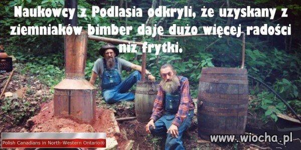 Naukowcy z Podlasia