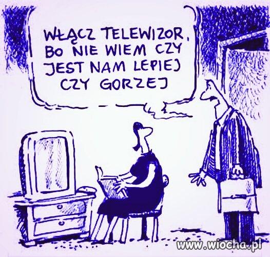 TV Wyrocznia