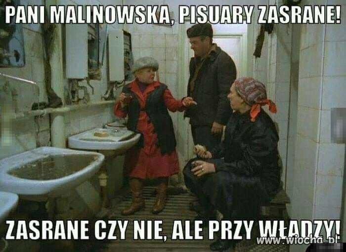 Pani Malinowska