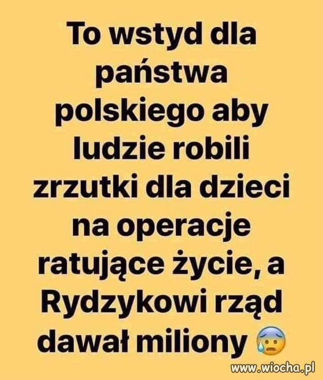 Wstyd dla Polszy