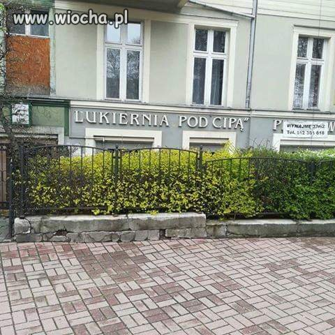 A tymczasem w Katowicach