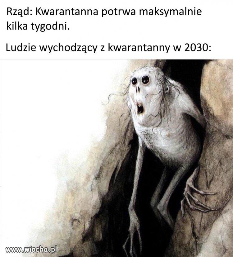 Polska 2030 rok