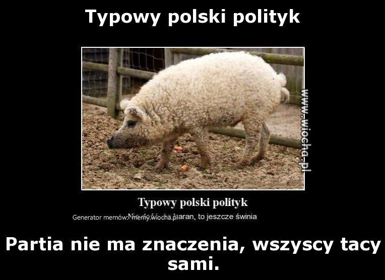 Typowy polski polityk