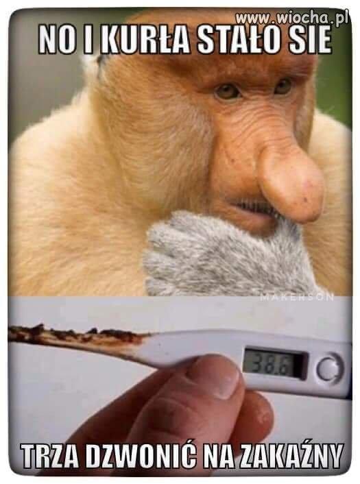 Kiedy temperatura