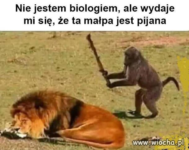 Prawa biologii
