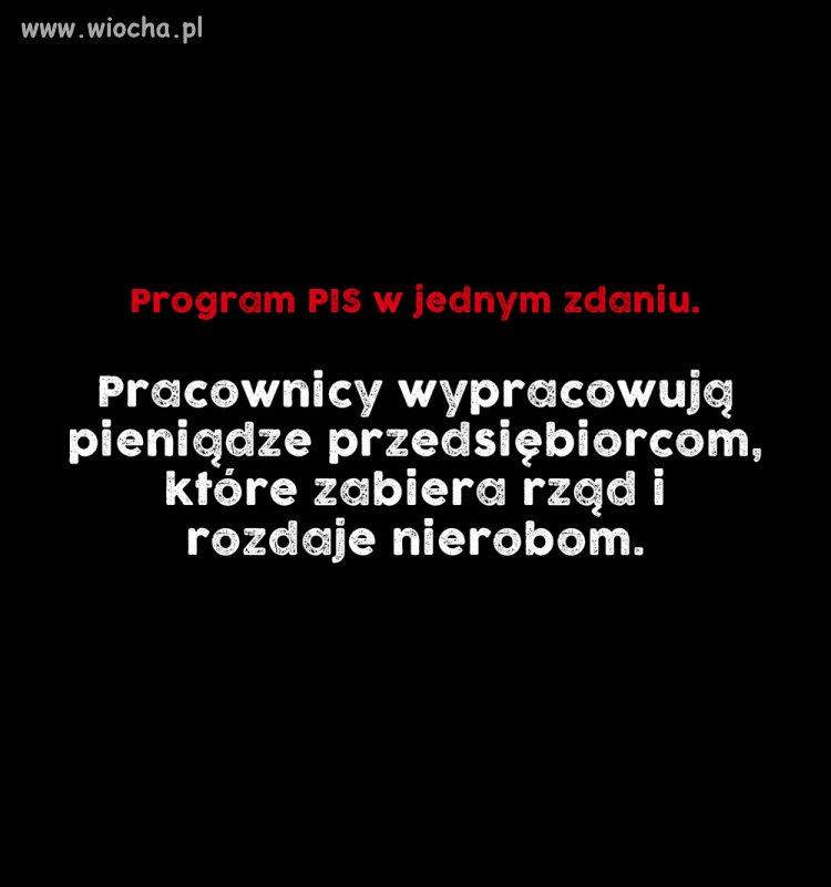 Program PIS w jednym zdaniu.