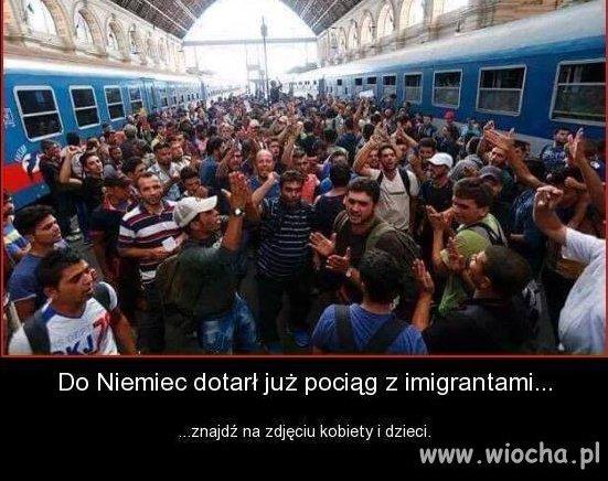 To nie emigranci ... tylko armia w cywilu