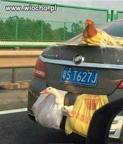 Transport drobiu wersja azjatycka.