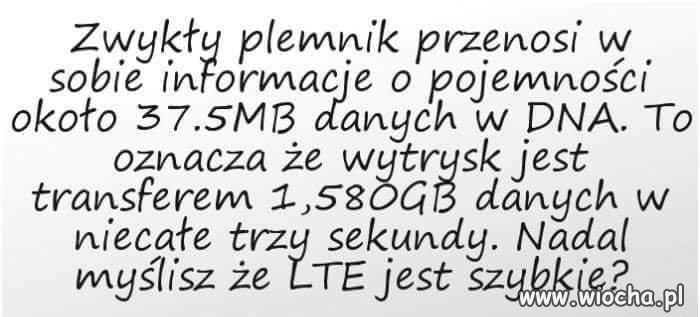 Co ty wiesz o LTE