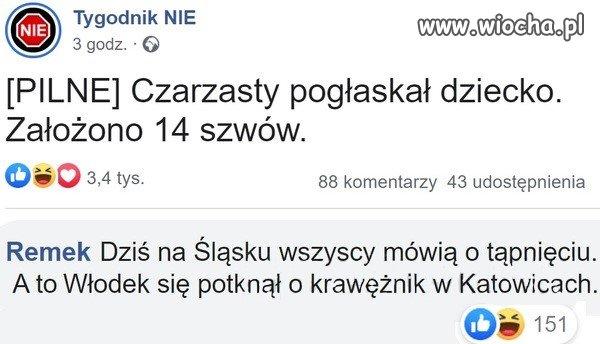 Czarzasty