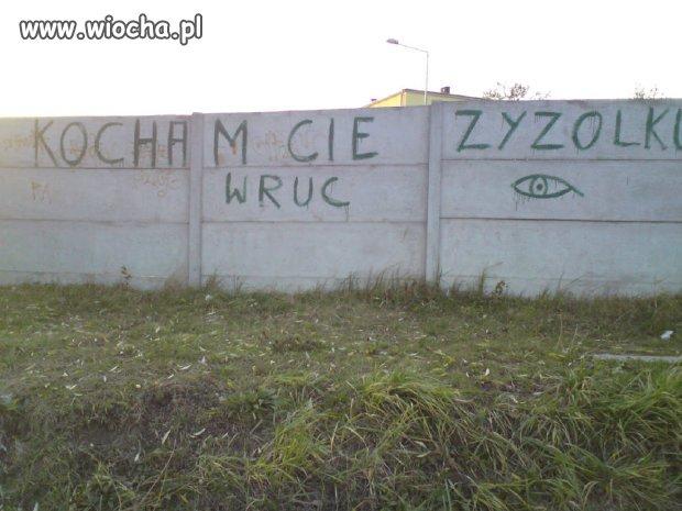"""""""Zyzolku"""""""
