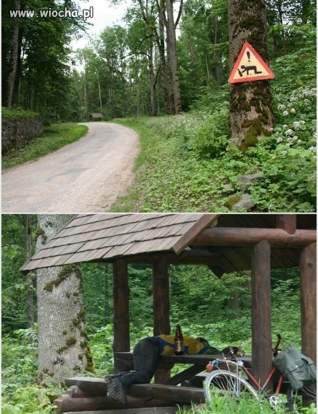 Znaki muszą być przestrzegane.